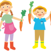 庭で家庭菜園から貸し農園野菜作りへ
