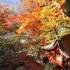紅葉を見に室生寺へ。