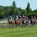 競馬を愛する者のブログ