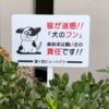 犬糞に迷惑する犬