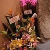 赤坂 赤坂松葉屋別邸 赤松