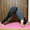 ヨガのドルフィンポーズができない人は腿裏を伸ばせ!:効果とやり方について解説