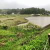 田尻池(富山県富山)