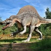 スピノサウルスは泳ぎが得意だった?