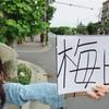 今は大阪!京都→梅田ヒッチハイクの話。面白カップルとの会話