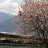 超有名撮影地 大桑~須原間の鉄橋