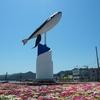 9月4日「くじらの日」その2~どうして鯨は哺乳類なのに魚へんなの?(*´▽`*)~