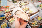 Tokyo TSUKIJI Fish Market. How about, How to get, Map here!!