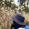 【初級者登山】2015/03 栃木 焼森山でミツマタに包まれる