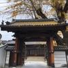 被爆樹木イチョウ、お寺の門の屋根突き抜けてます。被爆建物「安楽寺」(二葉の里、歴史の散歩道)