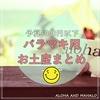 【2019年版】予算100円~1000円!ハワイ好きがオススメする『バラマキ用のお土産』はコレ!