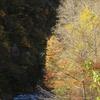 大白川の秋景色 Vol  1