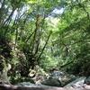 沖縄県民がオススメする、沖縄のディープなスポットその2 〜普久川滝〜