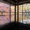 「瑠璃光院」の書院の机に写る絢爛たる紅葉美