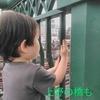 6月27日/見る鉄(上野駅近くの両大師橋)