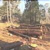 【土地探し】155坪の山林を購入