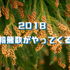 2018年花粉対策!鼻クシュクシュがやってくる!