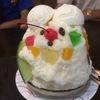 「氷白熊を食べに行こう!いざ対決じゃ!」天文館むじゃき in 鹿児島