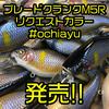 【ニシネルアーワークス】ブレードが装着されたクランクベイトのショップオリカラ「ブレードクランク M5R リクエストカラー #ochiayu」発売!