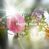 新年早々フキハラ