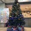 ☆クリスマスツリーを飾りました。☆