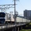 通達164 「 関西の貨物列車を朝練で狙う 」