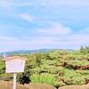 【まとめ】金沢のフォトジェニックな記念撮影スポット5選