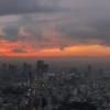 新宿・六本木・赤羽橋