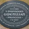 プリンセス・オブ・ウェールズの歴史