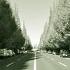 【イベント案内】第 5 回パブリックデザインセミナー『生活の中の安全な道路とは-歩車共存は可能か-』(4 .26 東京)