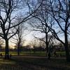 ロンドン 冬の公園 ある晴れた日の一日 スナップショット