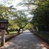 4月某日ひとり温泉旅 新潟県・咲花温泉へ('15)