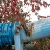 紅葉と送水管(茂森橋)