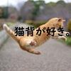 猫背さんに言いたい!将来・・腰が曲がる人、曲がらない人の違い。