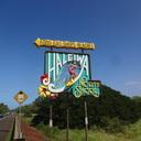 ハワイより愛をこめて | シネマ日記