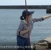 アジの泳がせ釣りアオリイカ、エビのエサでグレ釣り、新婚さんと家族連れ