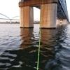 ハゼ釣り【11月でも意外と浅場が熱い?江戸川放水路でのボートハゼ釣り。】