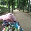 サイクリングとくすの樹さんでプリンアラモード☆*:.。. o(≧▽≦)o .。.:*☆