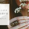 30代ジャニオタ、「一生もの」を買う ①日傘・遮光パーカー・帽子