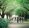 青山学院女子短期大学が2019年度より募集停止に。2018年度学生募集が最終になります