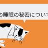 猫って1日何時間寝るの?猫の睡眠時間から寝方の心理について
