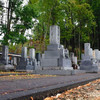 寺の墓地、国税が差し押さえ 税金滞納で異例の公売