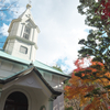 修善寺 周辺の観光スポット (虹の郷、もみじ林、ハリストス正教会、旭滝、ジオリアと各駐車場)
