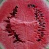 無農薬EMBC*大玉スイカ収穫しました!@新潟EMBC複合発酵バイオで栽培する健康農産物の会