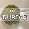 タイ産ドリアンに夢中!ガンヤオ種とモントン種を食べてみた