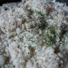 早く食べたい!きのこクリームリゾット by ニコ