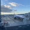 【新型コロナウイルス】羽田空港の検疫と隔離生活