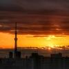 天気と空と:2020-11-21〜11-25