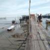 今日もダメだった、Teluku Bahangの釣り