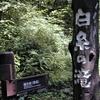まるで童話に出てきそうな美しい白糸の滝 (長野)